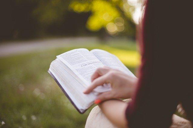 Könyveimről
