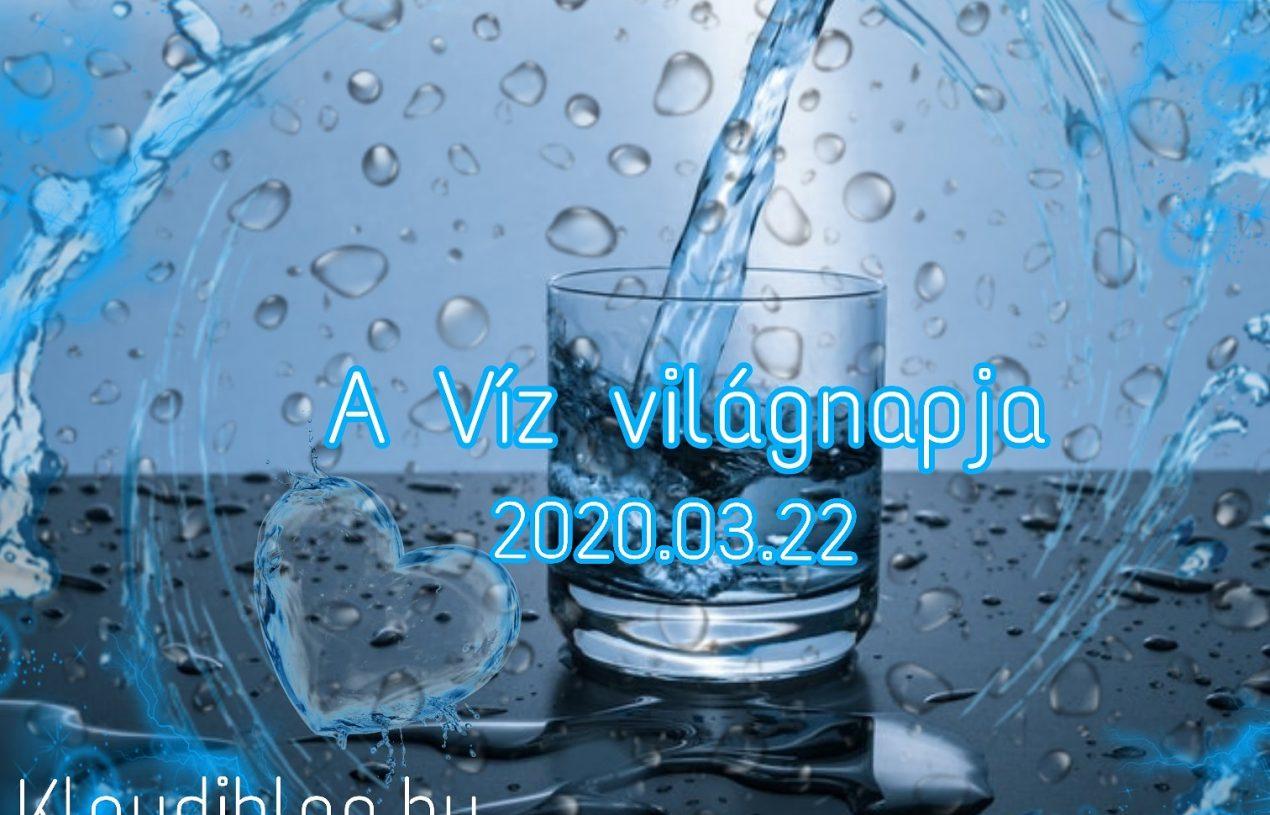 A Víz világnapja