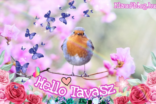 Hello Tavasz! 🌸
